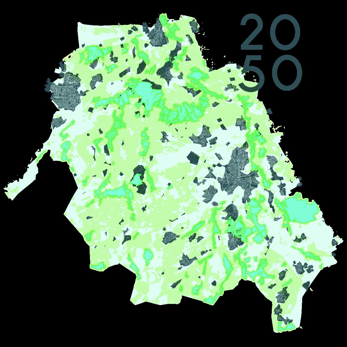 rijstvelden-2050
