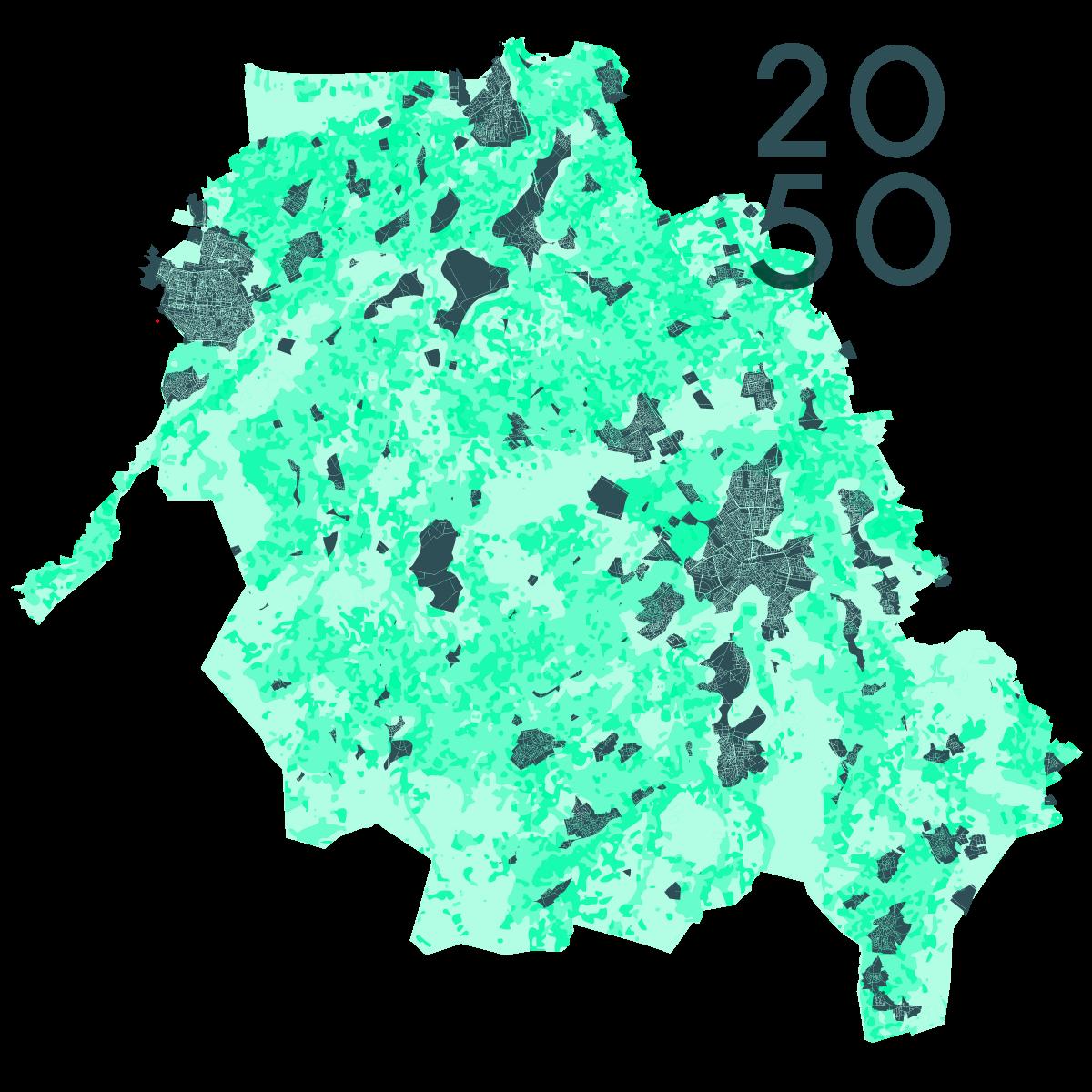 worminjectie-2050-1