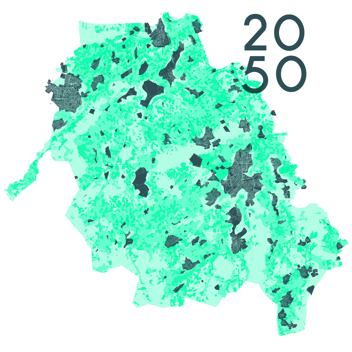 worminjectie-2050